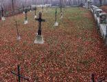 Cmentarz wojenny 340 Wola Nieszkowska 1
