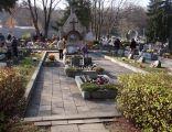 Cmentarz wojenny nr 366 - Limanowa 1