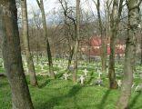 Chelm cmentarz wojskowy (1)