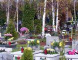 Cmentarz przy Brynicy