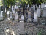 Cmentarz Żydowski zdjęcie nr VI