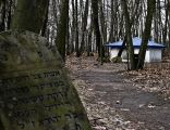 Jewish Cemetery Kock IMGP2319