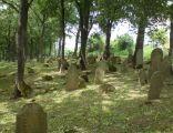 Cmentarz żydowski w Nowym Żmigrodzie