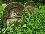 Jewish cemetery Ozarow 3