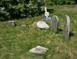 Jewish cemetery Ryki IMGP3304