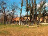 Cmentarz Zydowski Scinawa