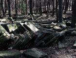Jewish cemetery Sobienie Jeziory IMGP2992