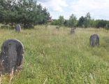 Cmentarz żydowski Sobków Jewish cemetery in Sobkow 1