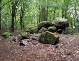 Borkowo - grobowiec megalityczny