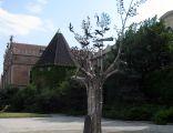 Millennium Tree in Gdańsk