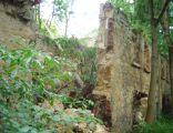 Kraszowice, ruiny dworu
