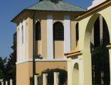 ychlin, dzwonnica przy kościele par. pw. śś. Piotra i Pawła 01; Kot