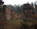 Ruiny zboru ariańskiego w Gruszczynie