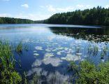 Jezioro Borowo