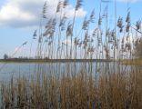 Jezioro Kownackie wieś Mrówki