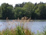 Jezioro Straszyńskie (Bąkowo)