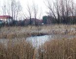 JezioroZablockiego