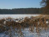 Jezioro Kludno