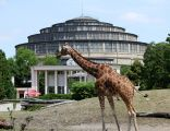 Wroclaw zoo and centennial Hall