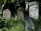 Jewish cemetery Sokolow Malopolski IMGP4722