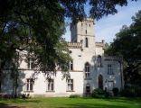 Pałac w Wilczy (3)