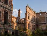 Wicimice, ruiny pałacu (01)