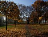 Katowice Park Bogucki 10
