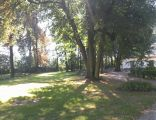widnik (limanowski) - park dworski