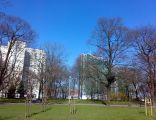 Park Drweskich Poznan