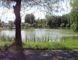Park Leśna
