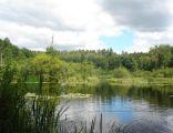 Park dworski w Podolu Małym