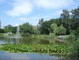 Ino Park Solankowy staw