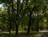 Park Szwedzki Kraków Nowa Huta