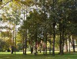 Wisniowy Sad (Cherry Orchard) Park, os. Kolorowe,Nowa Huta,Krakow,Poland