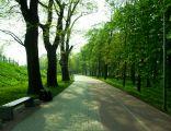 Park Zamkowy, Racibórz 3