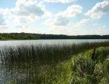 Radyszyn Lake