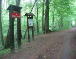 Rezerwat przyrody Łęg nad Swelinią 02