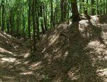 Panorama parowów2
