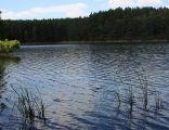 ZPK Jezioro Piecki2 04.07.10 p