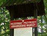 Rezerwat Annabrzeskie Wąwozy