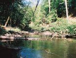 Brda in nature reserve Przyton
