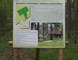 Nature reserve Puszcza Marianska01