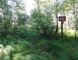 POL Chybie Rezerwat przyrody Rotuz 1