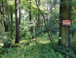 POL Wiślica (śląskie) Rezerwat Przyrody Skarpa Wiślicka