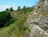 Rezerwat Wąwóz w Skałach