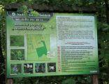 Rezerwat przyrody Wierzchowiska 06