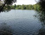 Grunfeld Pond Katowice Poland 004