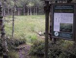 Torfowisko pod Zieleńcem, tablica na ścieżce edukacyjnej w rezerwacie