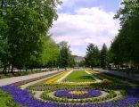 Uzdrowisko Inowrocław - Dywany kwiatowe