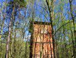 Gichta - ruiny Huty Waleska 2